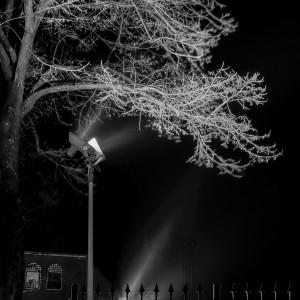 Renata nachtfoto 2
